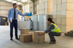 Manager die vrouwelijke werknemer instrueren terwijl het werken stock foto's