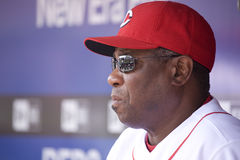 Manager Dusty Baker Lizenzfreies Stockbild