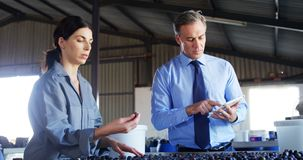 Manager instructing worker while checking a harvested olives 4k stock footage