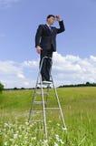 Manager ist auf der Karrierestrichleiter Stockfotografie