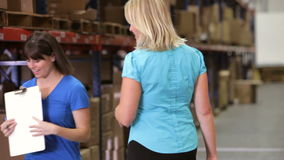 Manager And Worker Checking Goods In Warehouse stock video