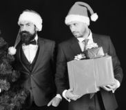 Managers with beards get ready for Christmas. Businessmen with curious faces hold Christmas tree and presents. New Year celebration at work concept. Men in royalty free stock image