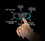 Managing Employee Health. Presenting diagram of Managing Employee Health Royalty Free Stock Images