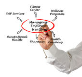 Managing Employee Health Royalty Free Stock Images