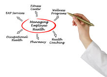 Managing Employee Health. Presenting diagram of Managing Employee Health Royalty Free Stock Photos