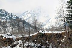 Manali喜马偕尔邦镇山和树在印度 免版税库存照片