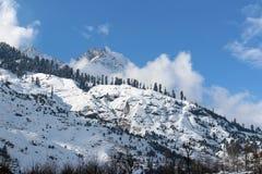 Manali喜马偕尔邦镇山在印度 库存照片