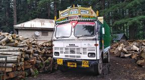 Indian truck at the sawmill royalty free stock photos