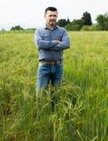 Mananseende i grönt fält fotografering för bildbyråer