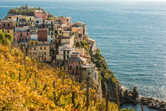 Manarola σε Cinque Terre στοκ φωτογραφία με δικαίωμα ελεύθερης χρήσης