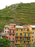 Manarola 08 Royalty Free Stock Images