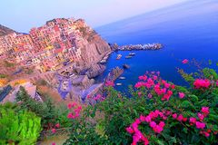 Manarola with bouganvilles Stock Photo