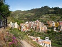 Manarola, Cinque Terre with its vineyards and coastal path. Stock Photos