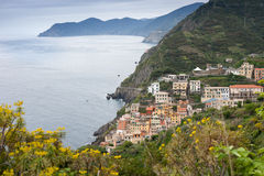 Manarola in spring Royalty Free Stock Photography