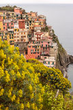 Manarola in spring time. Manarola may be the oldest of the towns in the Cinque Terre, with the cornerstone of the church, San Lorenzo, dating from 1338. The Royalty Free Stock Photography