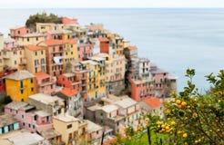 Manarola village in Cinque Terre Stock Photography