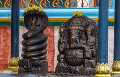 Free Manasa Snake Goddess At Sri Murugan Temple, Kadirampura, Karnataka, India Stock Photo - 202862500