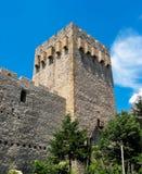 Manasija Monastery In Serbia Royalty Free Stock Image