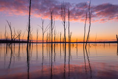 Manasquan Reservoir at Sunrise. Colorful sunrise at Manasquan reservoir in New Jersey Royalty Free Stock Photography