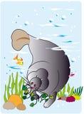 Manatee em seu habitat natural ilustração royalty free