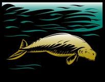 Manatee ou dugong ilustração stock