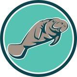 Manatee Sea Cow Circle Retro Royalty Free Stock Image
