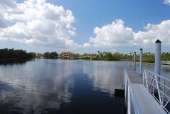 Manateeflod i Florida Arkivfoto