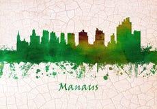 Manaus Brazylia linia horyzontu ilustracji