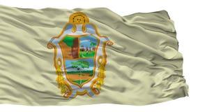 Manaus-Stadt-Flagge, Brasilien, lokalisiert auf weißem Hintergrund vektor abbildung