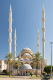 Manavgat moské 02 Arkivbild