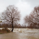 Manavgat River flooded Royalty Free Stock Images