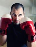 Manboxning med handskar Royaltyfria Foton
