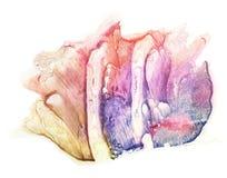 Mancha azul, violeta, roxa, cor-de-rosa, vermelha e marrom da pintura Pintura abstrata da aguarela Mim imagem de stock