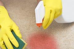 Mancha de óxido roja de limpieza en una alfombra Foto de archivo libre de regalías