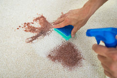 Mancha de la limpieza del hombre en la alfombra con la esponja Fotos de archivo