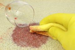 Mancha del vino de la limpieza de una alfombra foto de archivo libre de regalías