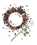 Manchas do café do copo de café e de Rosa branca Imagens de Stock
