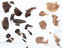 Manchas do chocolate imagem de stock royalty free