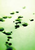 Manchas verdes de la tinta Foto de archivo libre de regalías