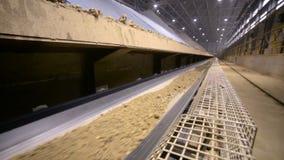 Manche la mudanza encendido del transportador en la instalación moderna de mina Lanzamiento del resbalador
