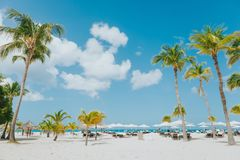 Mancheabo海滩白色沙子棕榈蓝色sky's蓝色海洋热带天气加勒比海放松 免版税库存图片