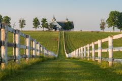 Manchester-Bauernhof in Lexington Kentucky bei Sonnenaufgang stockfotos