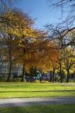Manchester, Groter Manchester, het UK, Oktober 2013, mening van de bibliotheek van de Metropolitaanse Universiteit van Manchester royalty-vrije stock foto