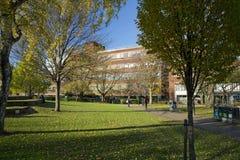 Manchester, Groter Manchester, het UK, Oktober 2013, mening van de bibliotheek van de Metropolitaanse Universiteit van Manchester stock fotografie