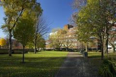 Manchester, Groter Manchester, het UK, Oktober 2013, mening van de bibliotheek van de Metropolitaanse Universiteit van Manchester royalty-vrije stock afbeelding