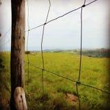 Manchmal ist das Gras auf der anderen Seite grüner Stockfotografie