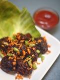 Manchurian di Veg con salsa al pomodoro immagini stock libere da diritti