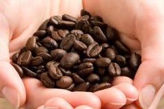 Manciata di chicchi di caffè Immagine Stock Libera da Diritti