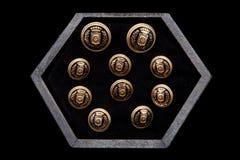 mancuernas en el boxConcept oscuro del men& x27; mirada de s Imagenes de archivo