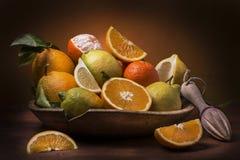 Mand citrusvruchtenstilleven Stock Foto's